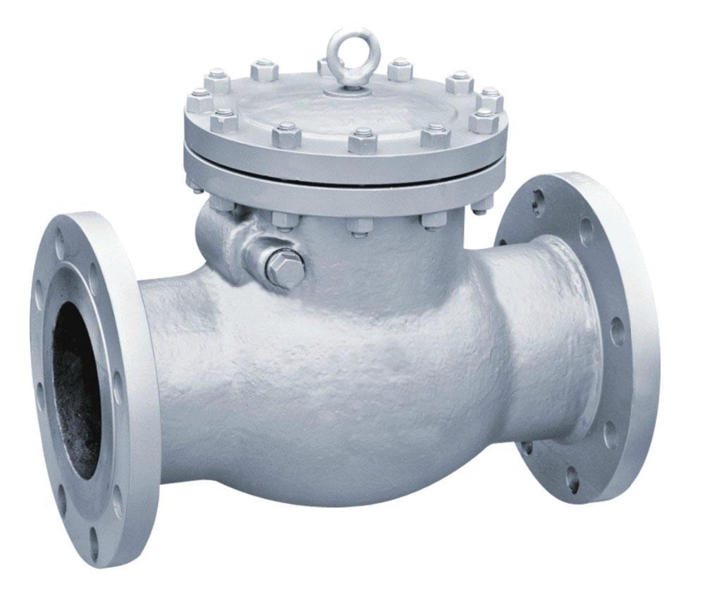 Для трубопровода обратный поворотный клапан 19с76нж и 16с10п