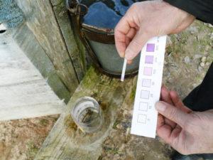 Произведение анализа воды на дому